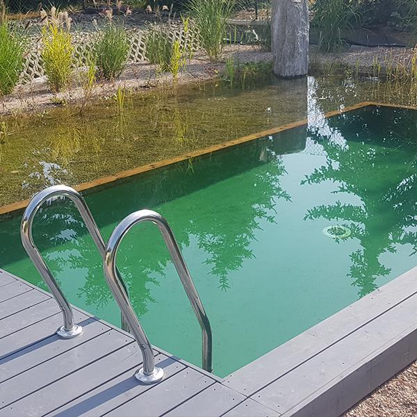 Naturalny staw kąpielowy Moszyce